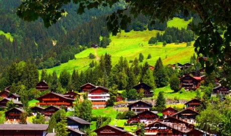 Conseil et représentation en Suisse dans les procédures administratives, techniques et de notaire pour l'achat ou la vente de l'immobilier suisse