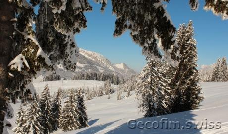 Gérance de biens immobiliers en Suisse