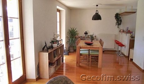 Lovely duplex apartment under the roof in Chailly-Montreux
