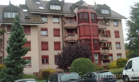 Wonderful apartment in the vicinity of Lausanne
