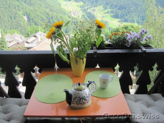 3-bedroom furnished apartment for sale with a beautiful view of the mountains in the village of Gryon, near the Swiss ski resort Villars-sur-Ollon 1 (7)